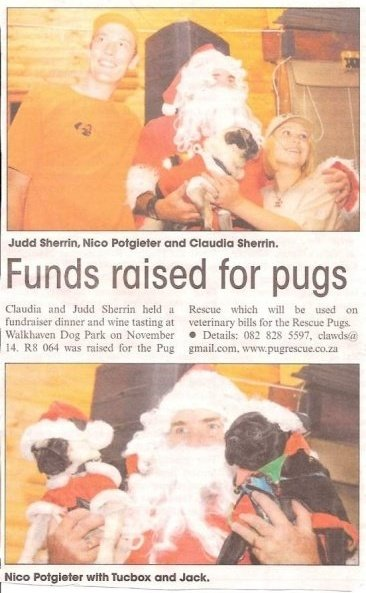 Pug Rescue Fundraiser NewsClipping